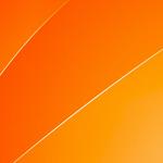 Житель Волжска получил год колонии за покупку «волшебных бобов» для похудения